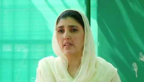 پاکستانی سیاست میں جوتا کلچر، ..