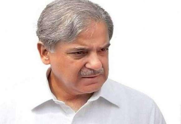 وزیراعلی پنجاب شہباز شریف لندن سے پاکستان واپس پہنچ گئے