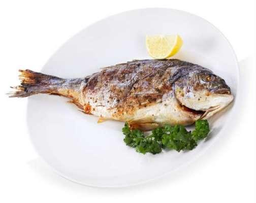 مچھلی کھانے سے دل کی بیماریوں سے بچا جا سکتا ہے،امریکی تحقیق