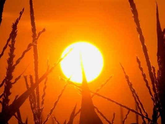 درجہ حرارت میں مسلسل اضافے کی وجہ سے پاکستان میں آئندہ برسوں کے دوران ..