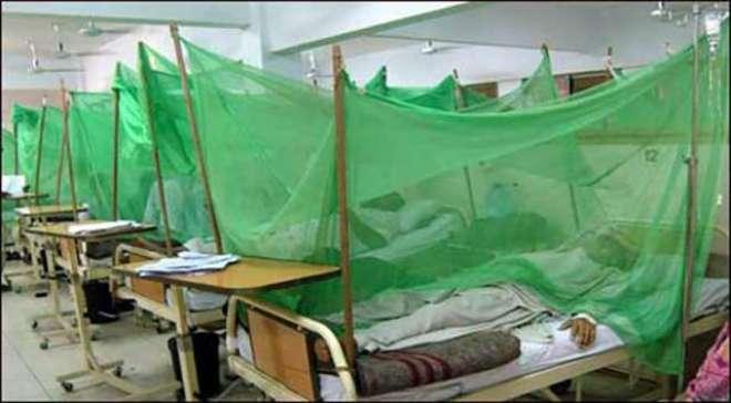 پشاور میں  ڈینگی سے مزید 2افراد ہلاک۔ مرنے والوں کی تعداد23 ہوگئی