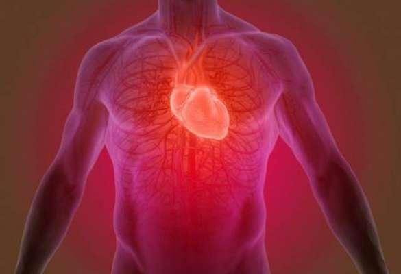 پاکستان میں روزانہ5000 لوگ دل کی بیمایوں کے باعث ہسپتال میں داخل ہورہے ..