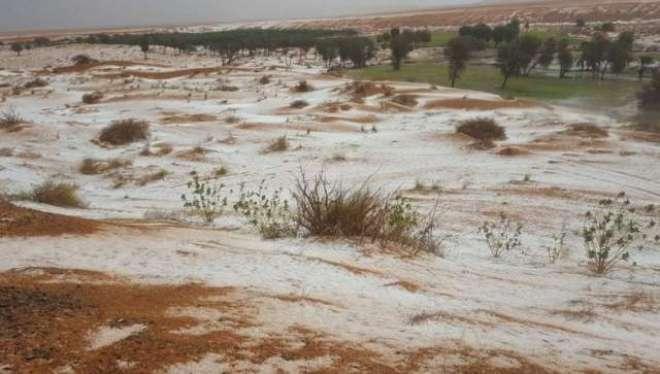 سعودی عرب میں سیلاب نے تباہی مچا دی