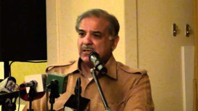 مسلم لیگ(ن) کے میگا پراجیکٹس سے مخالفین کو اپنا سیاسی مستقبل تاریک نظر ..