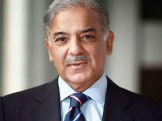 شہباز شریف مسلم لیگ (ن) کے بلا مقابلہ مستقل صدر منتخب