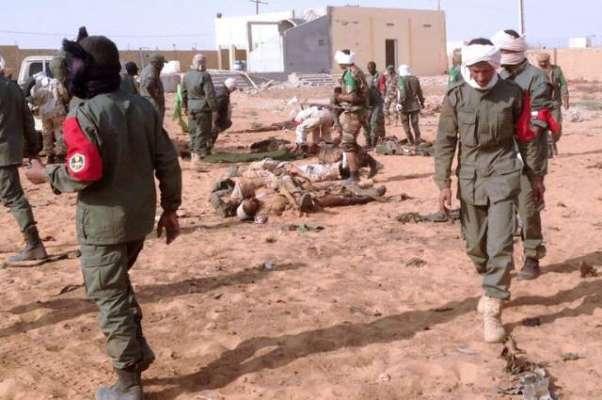 مالی میں مسلح شدت پسندوں کا سیاحتی مقام پر حملہ ،2 غیر ملکی ہلاک
