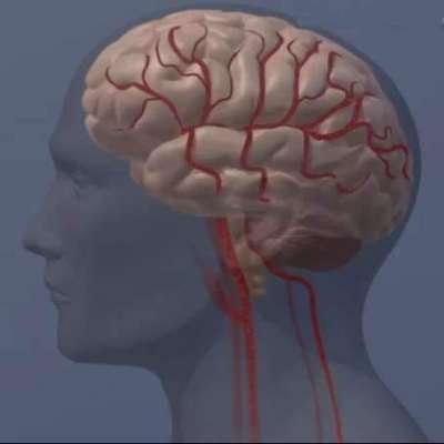 دماغی امراض کی آگاہی کے لیے برٹش کونسل کے زیر اہتمام پروگرام