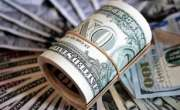 بجٹ تک ڈالر کی قیمت میں کتنا اضافہ ہو گا