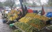 صوبائی دارالحکومت میں فی کلو پھلوں کی قمیتں