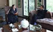 عمران خان نے ڈاکٹر یاسمین راشد کو وزیراعلی پنجاب بنانے کا گرین سگنل ..