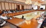 وزیر اعظم کی وفاقی کابینہ کو 2 دن کی مہلت