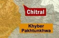 چترال میں چینی انجینئرزکی گاڑی کوحادثہ ، 6 افراد زخمی