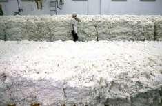 انٹرنیشنل کموڈٹی ایکسچینج میں روئی کے نرخوں میں 1 فیصد کمی
