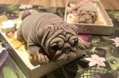 Taiwanese Cafe Goes Viral for Its Horrifyingly Realistic Puppy Shaped Ice Cream
