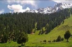 پاکستان اور چین کا جنگلی حیات کے تحفظ اور موسمیاتی تبدیلی کے منفی اثرات ..