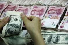 رواں سال سرمایہ کاری کے کلیدی کردار پر توجہ دی جائے گی،چینی ترقیاتی ..