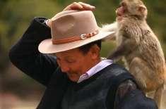 ملیے بندروں کے باپ سے۔تبت سے تعلق رکھنے والے شخص نے اپنی زندگی بندروں ..