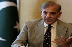 سابق وزیر اعلیٰ پنجاب نے اویس لغاری کی پیشکش قبول کر تے ہوئے جنوبی پنجاب ..