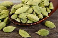 گلے کی تمام تکالیف کا گھریلو علاج ''الائچی'' سے کریں،ماہرین صحت