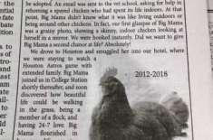 ایک غم سے نڈھال خاندان نے اپنی گھریلو مرغی کے انتقال پر ملال کا اشتہا ..