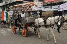 بھارت میں حکومت نے  جانوروں کو انسانوں کے برابر  حقوق دے دئیے گئے