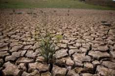 ْبلوچستان کی8 اضلاع میں خشک سالی نے پنجے گاڑھ لیے ،ْ