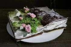 حیرت انگیز ڈیزائن  کے کیک بنانے والی نوجوان  پیسٹری شیف نے سب کو حیران ..