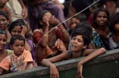 روہنگیا مسلمانوں کے حقوق کی خلاف ورزی قابل مذمت ہے'یورپی یونین