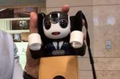 سفر میں دوست کی کمی محسوس ہوتی ہے؟ اب آپ جاپان میں روبوٹ کرایے پر لے ..