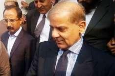 چیئرمین نیب نے شہاز شریف اور فواد حسن فواد کے خلاف ریفرنس پر دستخط کردئیے