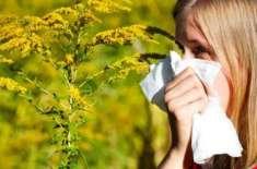پولن الرجی قابل عالج مرض ہے، فری کیمپوں کے ذریعے عوام میں شعور اجاگر ..