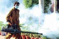 تحصیل بلامبٹ لوئردیرمیں ڈینگی کے سدباب کیلئے مچھر مار سپرے مہم کا آغاز