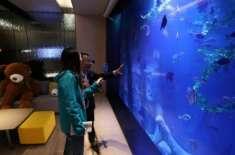 چین کا دنیا کو حیران کرنے والا ایک اور منصوبہ،زیر سمندرہوٹل کا افتتاح
