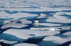قطب شمالی کی مستقل برف کا آدھا حصہ ختم ہوچکا ہے، ناسا