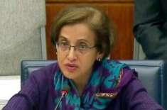 پاکستان اپنے دفاع کیلئے کم سے کم دفاعی صلاحیت کو برقرار رکھے گا،