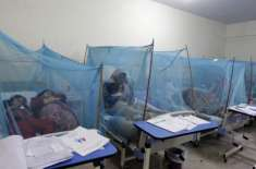 وانا میں درجنوں افراد ملیریا اور ڈینگی جیسے خطرناک امراض میں مبتلا ..