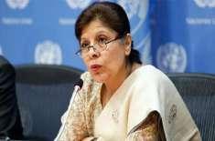 این ڈی ایم اے نے قدرتی آفات سے نمٹنے میں اہم کردار ادا کیا' نگران وزیر ..