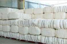 قومی برآمدات میں روئی سے تیار کردہ مصنوعات کے حصہ میں 6.3 فیصد اضافہ ..