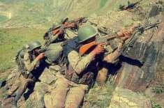 کارگل میں پاکستان کے خلاف لڑنے والے بھارتی فوج کی شہریت ختم