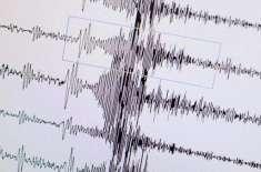 کوئٹہ اور گودو نواح میں زلزلے کے ہلکے جھٹکے محسوس کئے گئے
