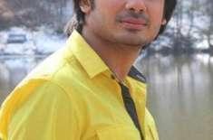 ولی حامد کی 2 وڈیوز بھارت سے ریلیز ہوں گی