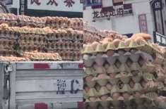 گرمی کے باعث ٹرک میں رکھے انڈوں سے چوزے نکلنے لگے
