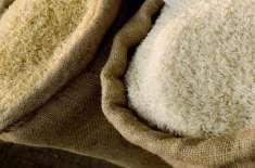 شپ منٹس میں حشرات کی موجودگی، چاول برآمدات زوال کا شکار