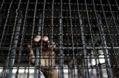 اسرائیلی فوجی عدالت نے 17سالہ فلسطینی نوجوان کو 35 سال قید، جرمانے کی ..
