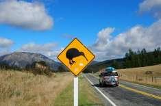 نیوزی لینڈ میں غیر ملکی شہریوں پر گھر خریدنے پر پابندی عائد کردی گئی