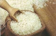 اس سال چاول کی32 فیصدزیادہ پیداواربرآمد کی جائے گی ،ترجمان رائس ایکسپورٹرز ..