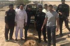 کویت: شیر کی رہائشی علاقے میں دِن دیہاڑے سیر سپاٹے کی ویڈیو وائرل ہو ..