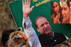 این اے 56 کا ضمنی انتخاب ،پاکستان تحریک انصاف اپنی غلطیوں کی وجہ سے ہاری