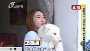 عورت ایک سال سے جس کتے کو پال رہی تھی وہ لومڑ نکلا