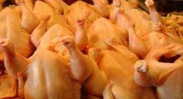 کرسمس بازاروں میں بیف،مٹن ، چکن انڈے بارعایت دستیاب ہیں۔ڈائریکٹر لائیوسٹاک ..